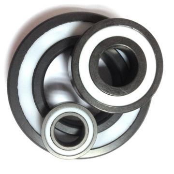 Timken, SKF Bearing, NSK, NTN, Koyo Bearing, Fbj NACHI Bearing, Auto / Agricultural Machinery Ball Bearing 6001 6002 6003 6004 6201 6202 6203 6204 Zz 2RS C3